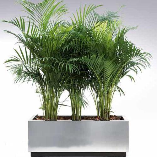 Jardineras macetas de acero inoxidable fiberland for Macetas plantas exterior