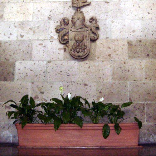 Jardineras interior jardinera inteligente preserva la - Jardineras decorativas ...