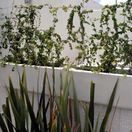 jardineras con enredadera marca fiberland